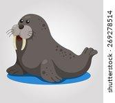 illustrator of walrus | Shutterstock .eps vector #269278514