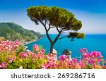scenic picture postcard view of ... | Shutterstock . vector #269286716
