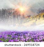 saffron geyfelya first... | Shutterstock . vector #269518724