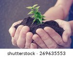 hand and plant | Shutterstock . vector #269635553