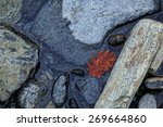 River Rocks With Water And Red...