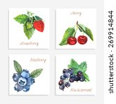 berry paper cards with... | Shutterstock .eps vector #269914844