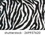Zebra Texture With Beige White...