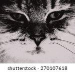 abstract sketch clip art cat... | Shutterstock . vector #270107618