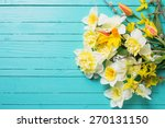 fresh  spring yellow narcissus  ... | Shutterstock . vector #270131150