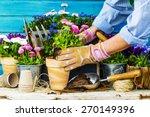 Work In The Garden  Planting...