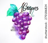 beautiful watercolor grape... | Shutterstock .eps vector #270186824