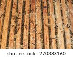 bees on honeycomb in a beehive | Shutterstock . vector #270388160