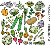 freehand drawing vegetables on... | Shutterstock .eps vector #270444080