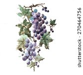 The Grapes With Leaves And...