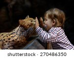 leptailurus serval and little... | Shutterstock . vector #270486350