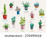 vector hand drawn flower pots... | Shutterstock .eps vector #270490418