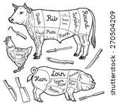 cuts of meat   chicken  pork... | Shutterstock .eps vector #270504209