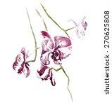 watercolor illustration of... | Shutterstock . vector #270625808