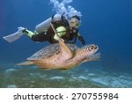 diver and turtle swimming in... | Shutterstock . vector #270755984