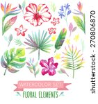 watercolor tropical set. vector ... | Shutterstock .eps vector #270806870