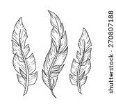 hand drawn bird feather set. | Shutterstock .eps vector #270807188