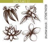 vector set of ink hand drawn... | Shutterstock .eps vector #270874058