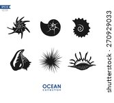 set of sea creatures and shells ... | Shutterstock .eps vector #270929033