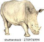 scalable hand drawn white rhino ... | Shutterstock .eps vector #270976994
