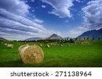 haystack in a field in summer... | Shutterstock . vector #271138964