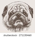 portrait of a pug | Shutterstock .eps vector #271150460