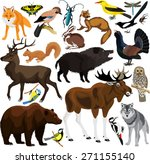 set of vector forest animals | Shutterstock .eps vector #271155140