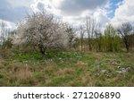 landfill and tree | Shutterstock . vector #271206890