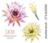 Cactus  Flower  Watercolor ...
