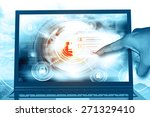 internet security | Shutterstock . vector #271329410