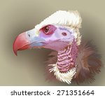 Vulture Portrait. Vector...