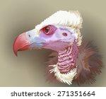 Vulture Portrait. Vector...