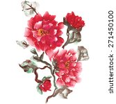 peonies  painted in gouache.... | Shutterstock .eps vector #271450100