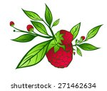 raspberry with green leaves... | Shutterstock .eps vector #271462634