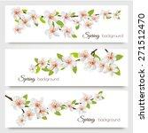 three sakura branches banners.... | Shutterstock .eps vector #271512470