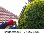 cutting a hedge with electrical ... | Shutterstock . vector #271576238