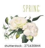 vector beautiful illustration... | Shutterstock .eps vector #271630844