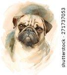 Watercolor Dog Pug Portrait  ...