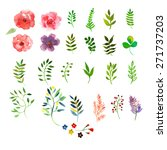 vector floral set. colorful... | Shutterstock .eps vector #271737203