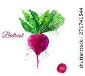 vector colorful watercolor...   Shutterstock .eps vector #271741544