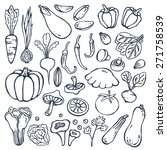 freehand   drawing vegetables... | Shutterstock .eps vector #271758539