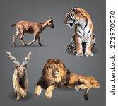 set of animals is in... | Shutterstock .eps vector #271970570