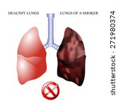 the dangers of smoking  the... | Shutterstock .eps vector #271980374