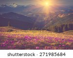 first spring flowers crocus as... | Shutterstock . vector #271985684