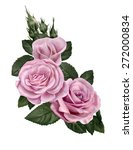three pink roses | Shutterstock . vector #272000834