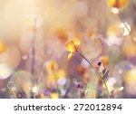 Background With  Wildflowers O...
