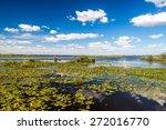 Wetlands In Nature Reserve...