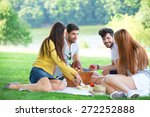 Group Of Friends Having Picnic...