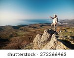 man with mobile phone on top of ... | Shutterstock . vector #272266463