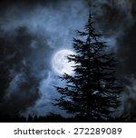 Magic Landscape With Pine Tree...